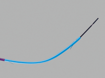 Oasis® One Action Stent Introduction System Preloaded with Cotton-Leung® Biliary Stent