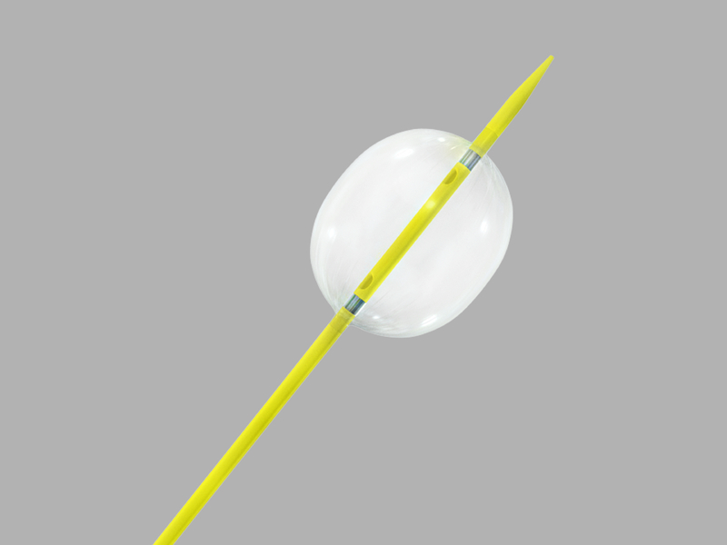 Coda Balloon Catheter