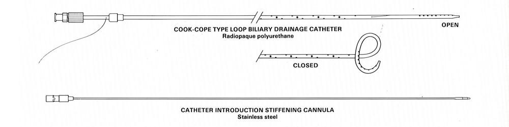biliary_loop