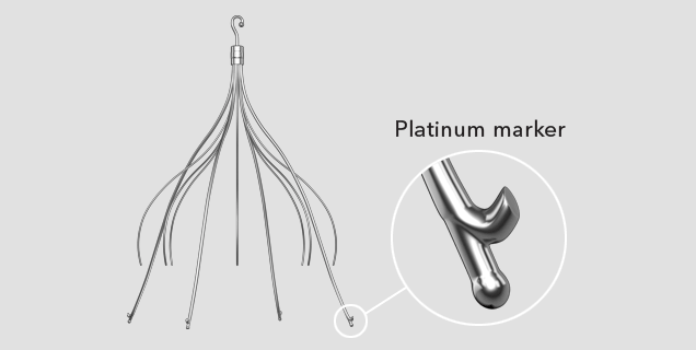 CelectPlatinum_636x320