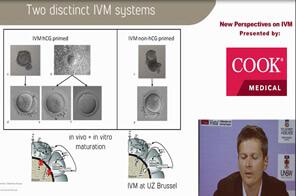 Prof. Dr. Michel De Vos on IVM