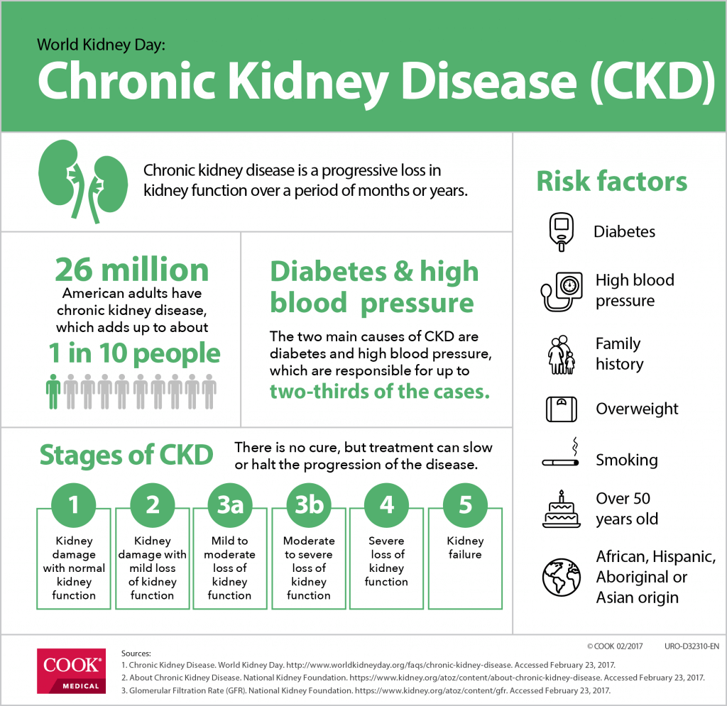 An infographic detailing chronic kidney disease (CKD) statistics for World Kidney Day.